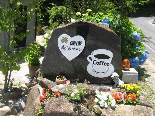 喫茶アイエリーの山野草
